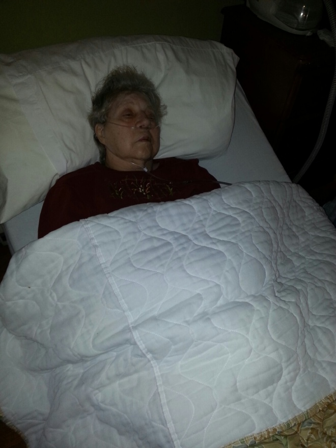 Mother Nursing Home bed